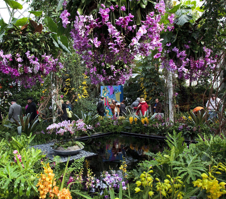 Brazilian Modern Nybg Orchid Show Raymond Jungles Inc
